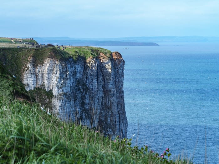 View to Filey Brigg from Bempton Cliffs, East Yorkshire, England