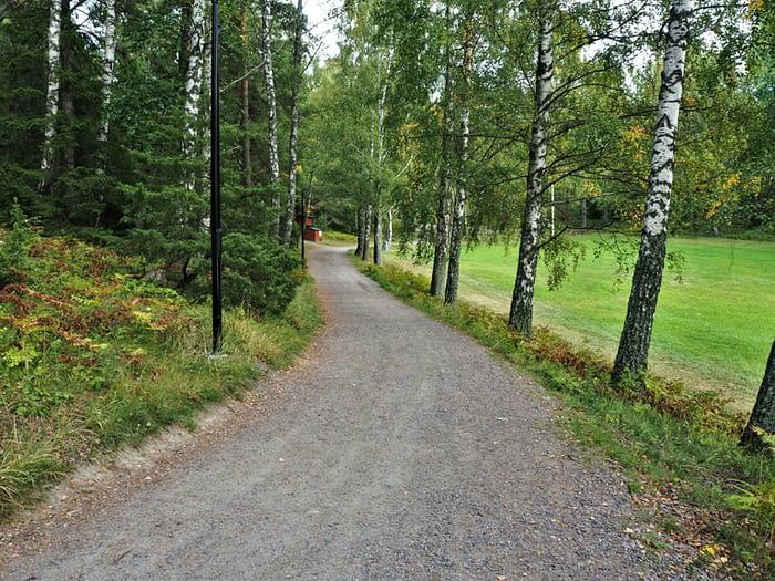 Road on Grinda Island in the Stockholm Archipelago, Sweden