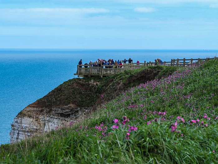Clifftop viewing platform at Bempton Cliffs, East Yorkshire, England