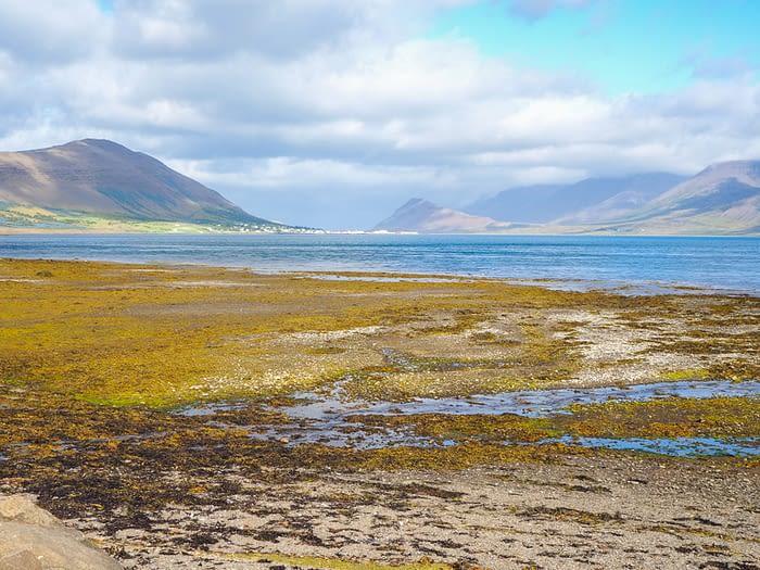 Westfjords Landscape, Iceland
