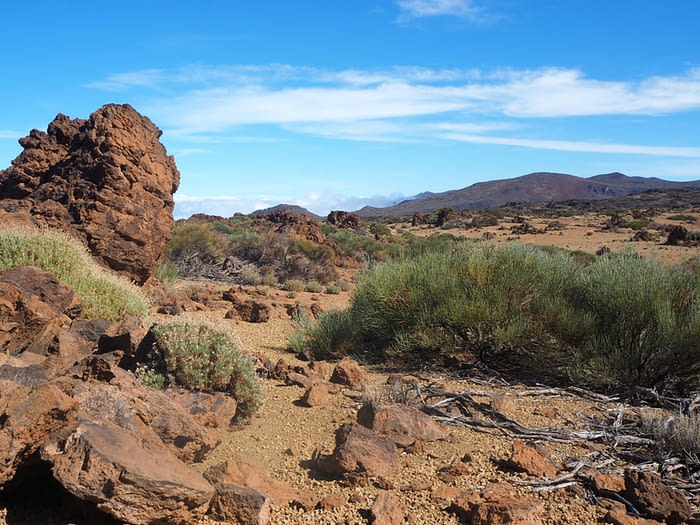 Landscape in the Teide National Park, Tenerife