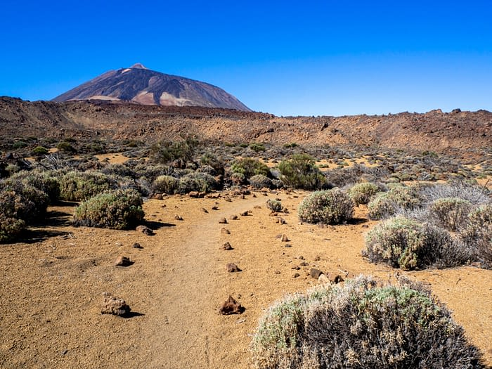 View of Mount Teide from Sendero 30, Teide National Park, Tenerife