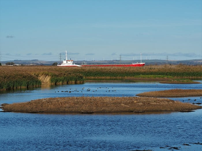 Blacktoft Sands nature reserve and a ship on the River Ouse, East Yorkshire, England