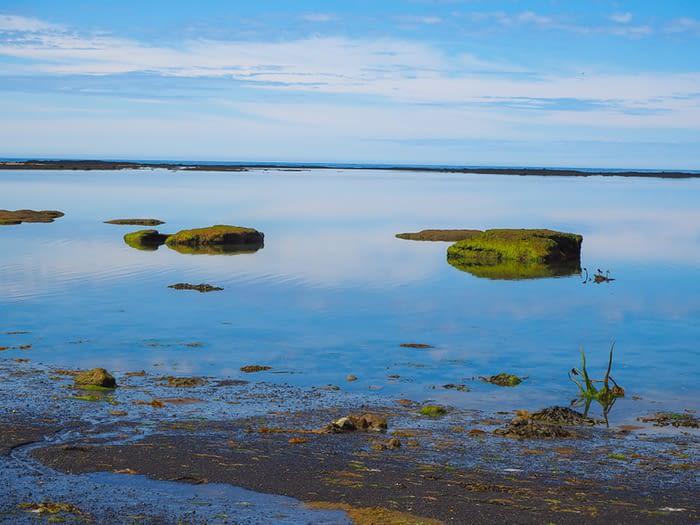 Peaceful coast on the Seltjarnarnes peninsula near Reykjavik, Iceland