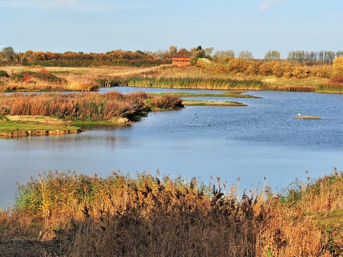 North Cave Wetlands, East Yorkshire, England