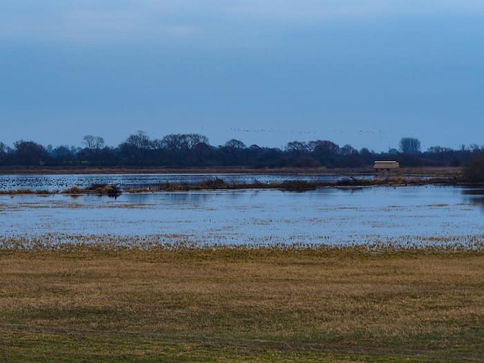 Flooded meadow and bird hide at Wheldrake Ings, North Yorkshire, England